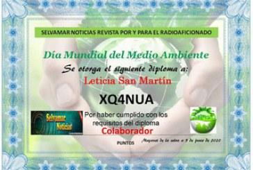 """Diploma Selvamar Noticias """"Día Mundial del Medio Ambiente"""""""