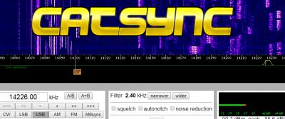 catsync logo