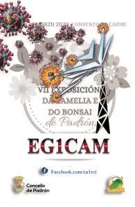 EG1CAM virus front